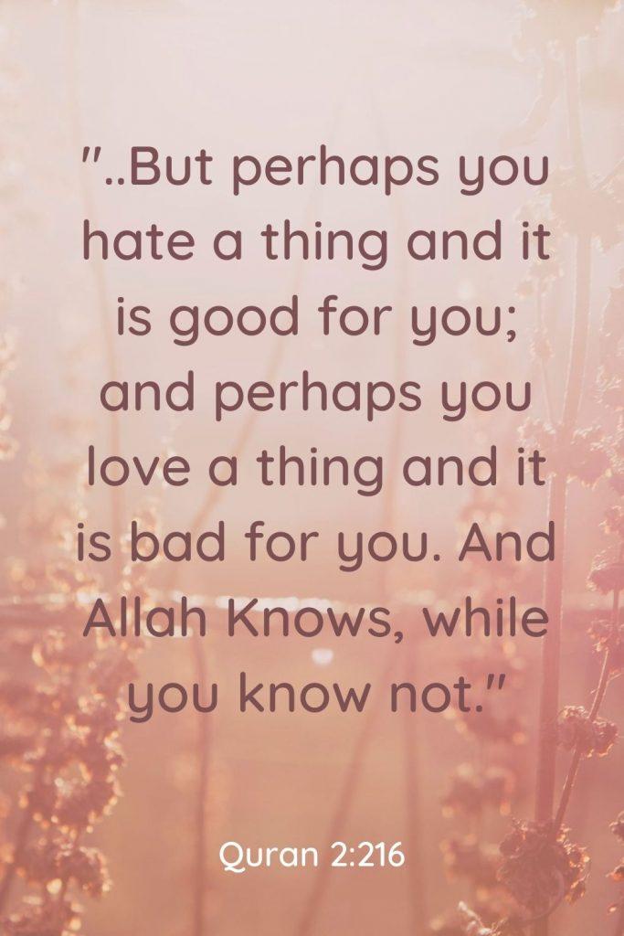 Quran verse 2:216